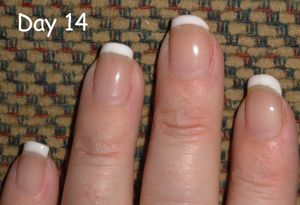 Day 14 with Shellac Nails