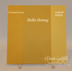 Hello Honey Color Comparisons