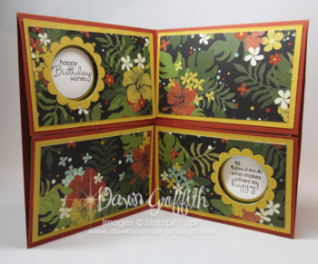 Double Gate Fold Double Peek a Boo card inside Dawn Griffith Stampin'Up! demonstrator