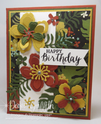 Double Gate Fold Double Peek a Boo card front  Dawn Griffith Stampin'Up! demonstrator