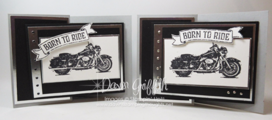 One Wild Ride Z fold gift card holders Dawn Griffith stampin Up Demonstrator check pout my blog for the video on this card Million Dollar Stamp set