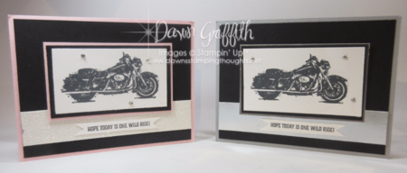Modified Z Fold cards horizontal Dawn Griffith One Wild Ride stamp set video posted on my blog