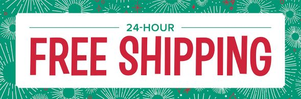 Cyber Monday FREE Shipping ~ 24 hrs ONLY !