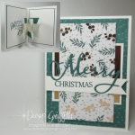 Two for Thursday videos  ~ Meandering Christmas card video