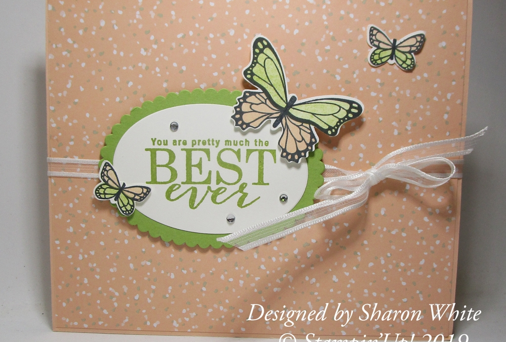 Butterfly Gala Accordion card from Sharon