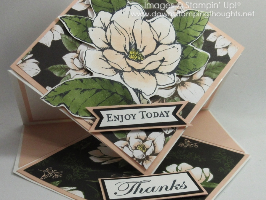 Two for Thursday ~ Diamond Shaped Easel Card videos