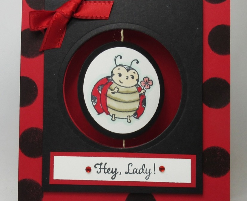 Two for Thursday ~ Little Ladybug Spinner card videos